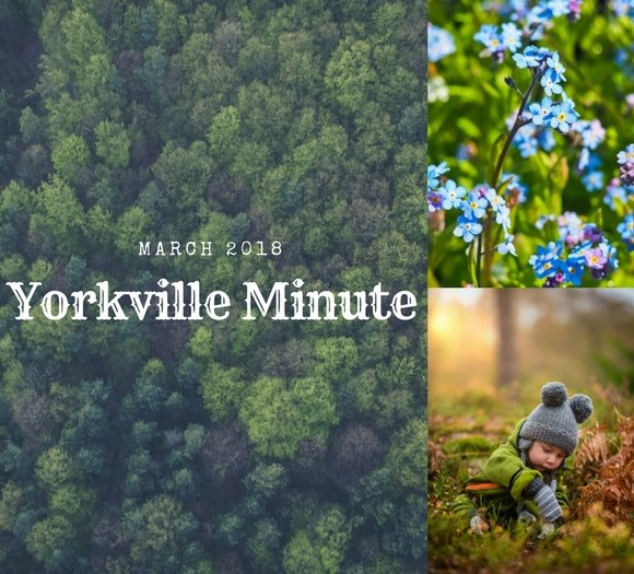 Yorkville Minute March 1, 2018