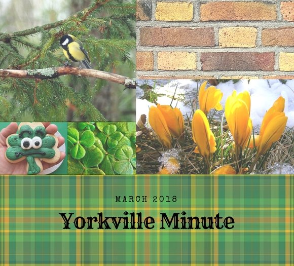 March 15, 2018 Yorkville Minute