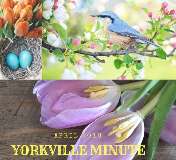Yorkville Minute