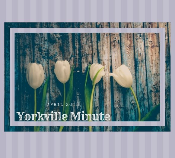 The Yorkville Minute Newsletter - April 16, 2018 Edition