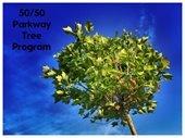 50/50 Parkway Tree Program
